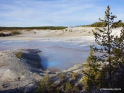 Yellowstone. Norris Geyser Basin (17)