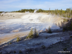 Yellowstone. Norris Geyser Basin (18)
