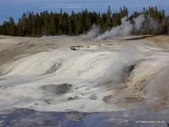 Yellowstone. Norris Geyser Basin (19)
