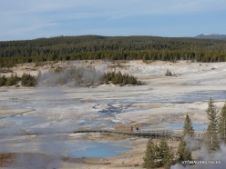 Yellowstone. Norris Geyser Basin (2)