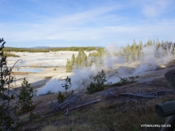Yellowstone. Norris Geyser Basin (3)