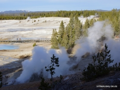 Yellowstone. Norris Geyser Basin (4)