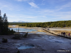 Yellowstone. Norris Geyser Basin (5)