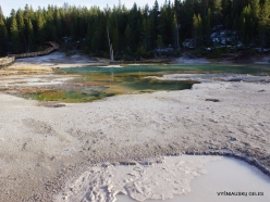 Yellowstone. Norris Geyser Basin (8)