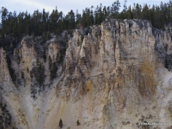 Yellowstone. The Grand Canyon of the Yellowstone (14)
