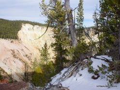 Yellowstone. The Grand Canyon of the Yellowstone (20)