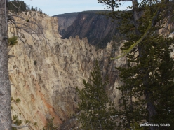 Yellowstone. The Grand Canyon of the Yellowstone (7)