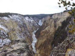 Yellowstone. The Grand Canyon of the Yellowstone. Yellowstone Falls (4)