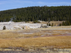 Yellowstone. Upper Geyser Basin (1)