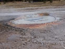 Yellowstone. Upper Geyser Basin (12)