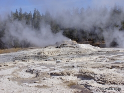 Yellowstone. Upper Geyser Basin (17)