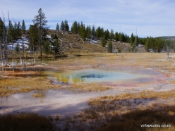Yellowstone. Upper Geyser Basin (19)