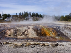 Yellowstone. Upper Geyser Basin (21)