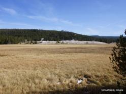 Yellowstone. Upper Geyser Basin (3)