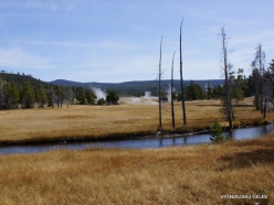 Yellowstone. Upper Geyser Basin (6)