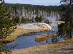 Yellowstone. Upper Geyser Basin (7)