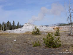 Yellowstone. Upper Geyser Basin. Castle Geyser