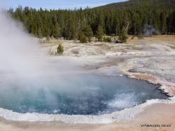 Yellowstone. Upper Geyser Basin. Crested Pool (3)