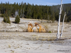 Yellowstone. Upper Geyser Basin. Firehole River