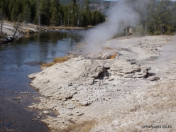 Yellowstone. Upper Geyser Basin. Mortar Geyser