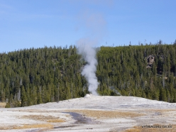 Yellowstone. Upper Geyser Basin. Old Faithful Geyser (1)