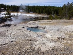 Yellowstone. Upper Geyser Basin. Spiteful Geyser (2)