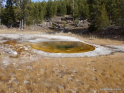 Yellowstone. Upper Geyser Basin. Wawe Spring