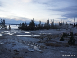 Yellowstone. Yellowstone Lake area (12)