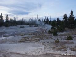 Yellowstone. Yellowstone Lake area (14)