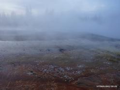 Yellowstone. Yellowstone Lake area (19)