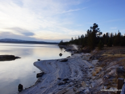 Yellowstone. Yellowstone Lake area (30)