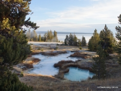 Yellowstone. Yellowstone Lake area (32)