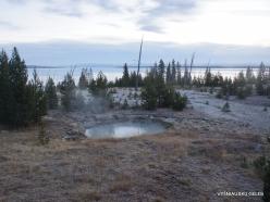 Yellowstone. Yellowstone Lake area (9)